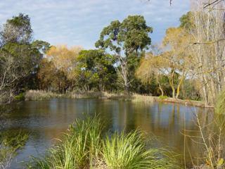 18th dam at Blackwood GC