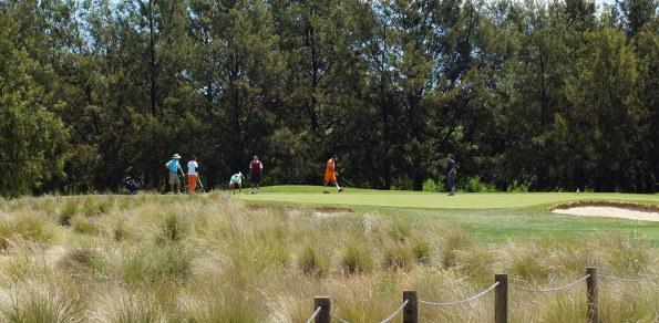 golf generic 595
