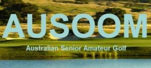Ausoom banner_2015 300