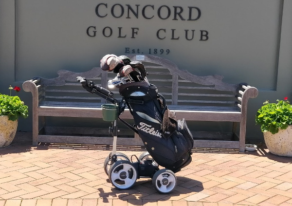 QOD Electric Golf Buggy Review: The little golf buggy that could